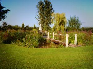 Walwyn Court pond